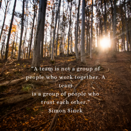 """""""A team is not a group of people who work together. A team is a group of people who trust each other."""" – Simon Sinek (1)"""