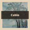 tree cabling graphic