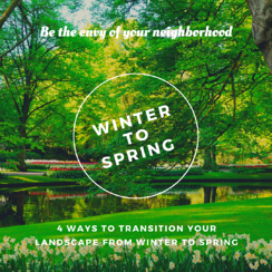 Transition Your Landscape Into Spring