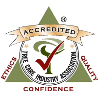 TCIA Accredited Organization - logo